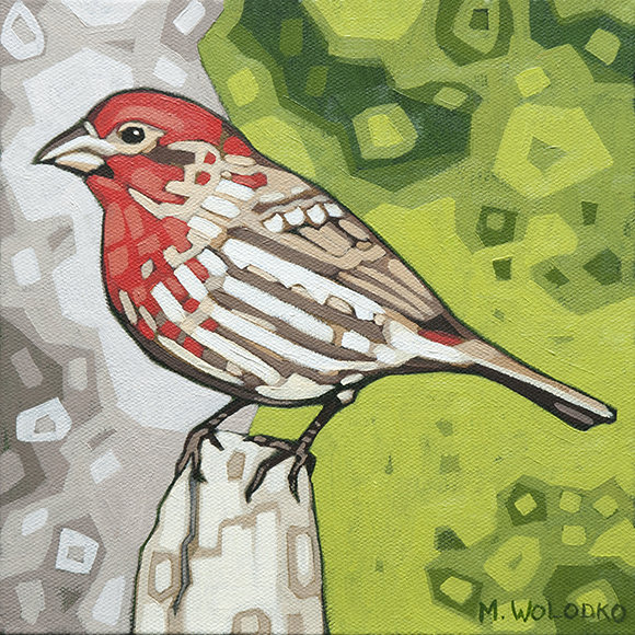 "House-Finch 8""x8"" (sold)"