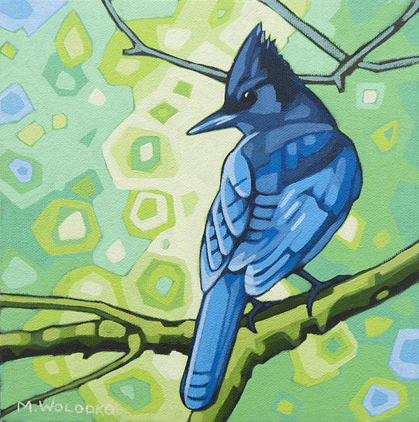 "Stellers Jay 8""x8"" (sold)"