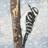 "Downy Woodpecker 8""x8"" (sold)"
