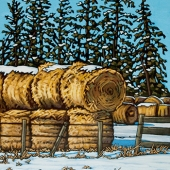 Winter-Bales
