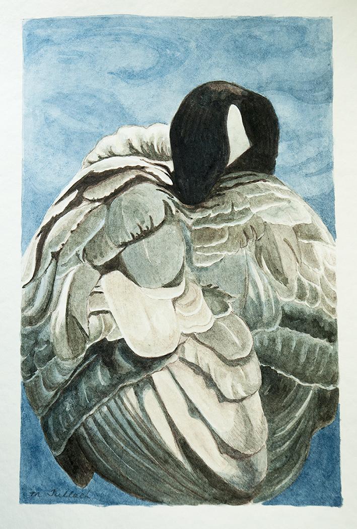 Goose_watercolour_sm